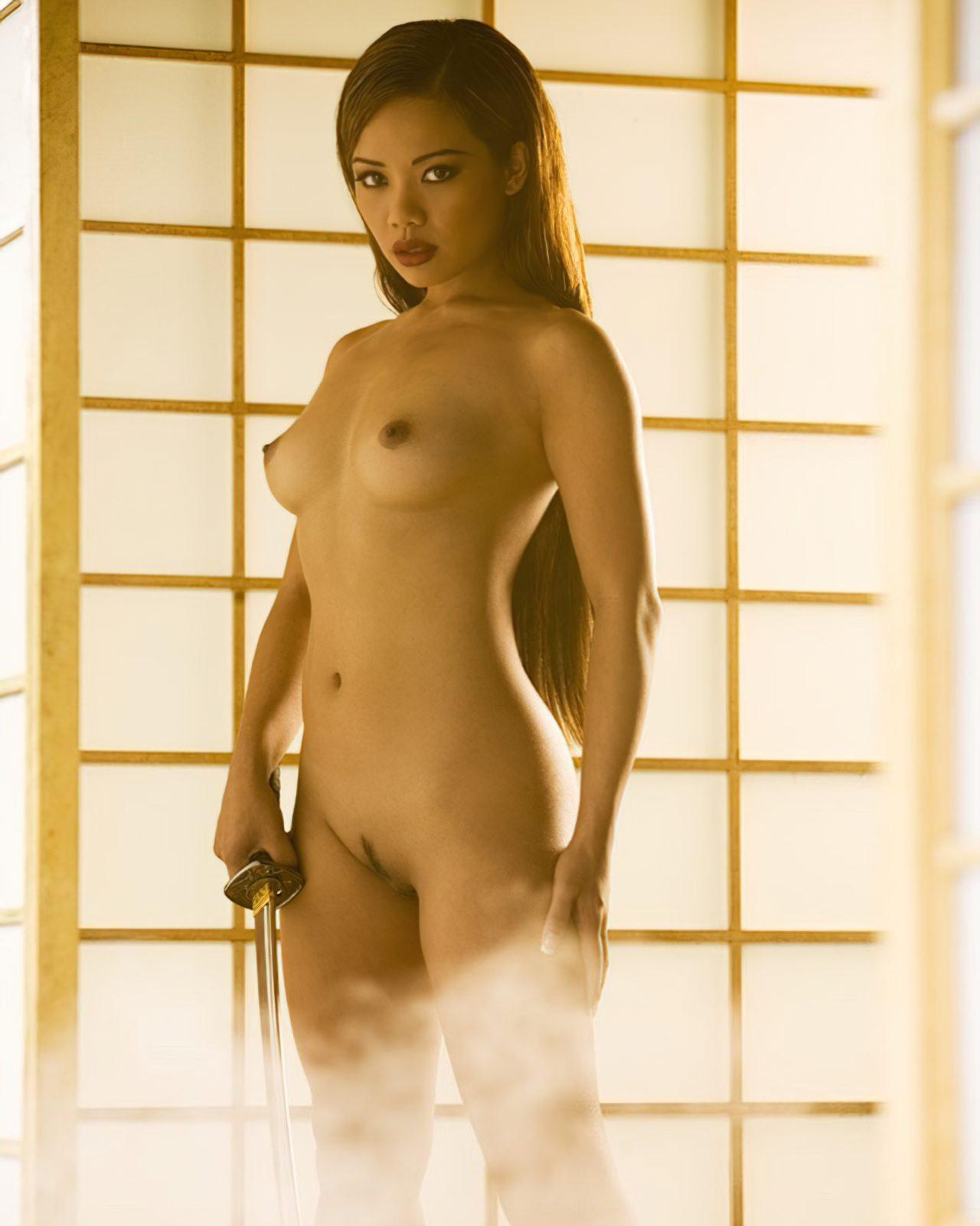 Samurai Deslumbrante (2)