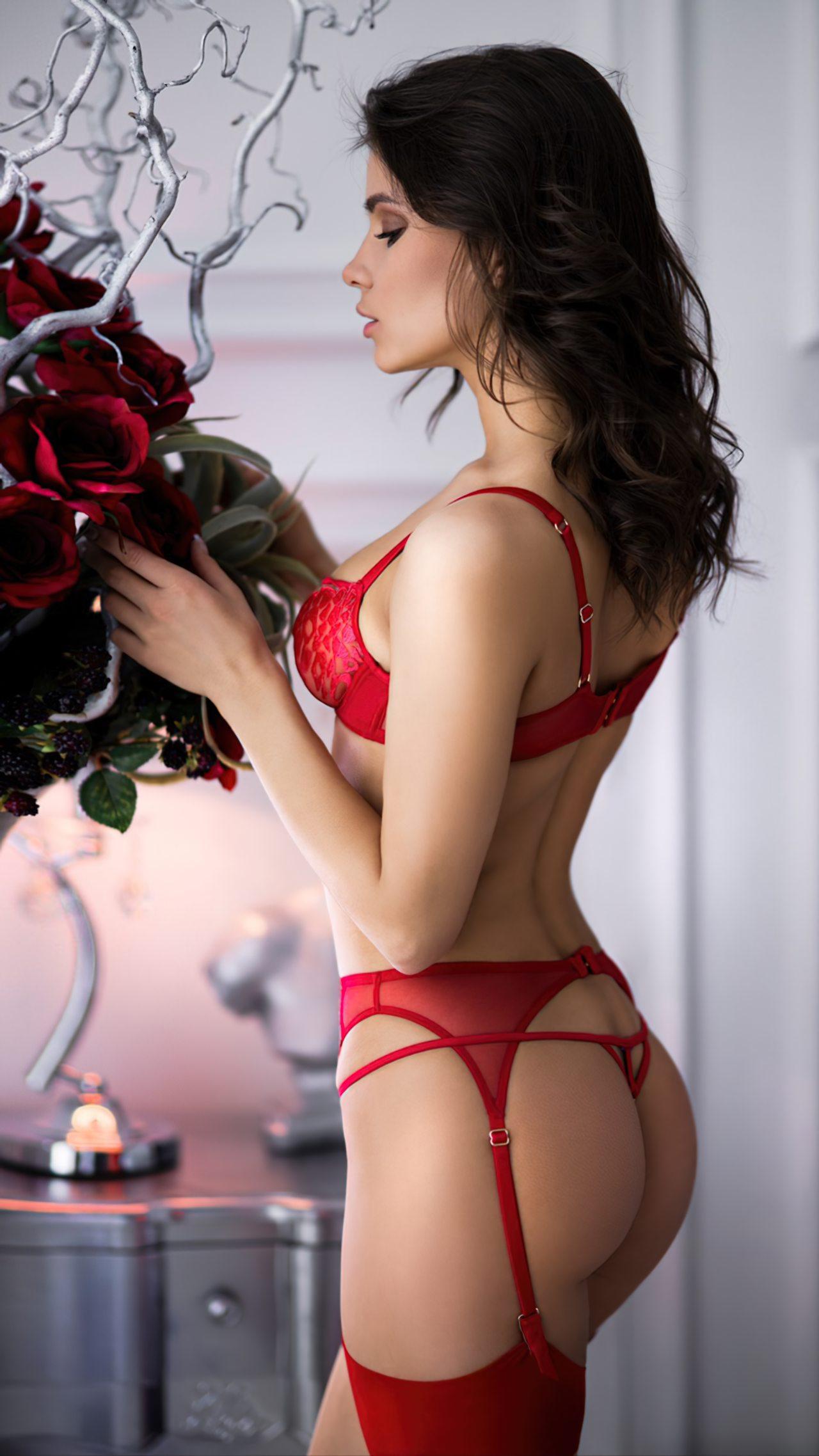 Lingerie Vermelha Sexy (2)