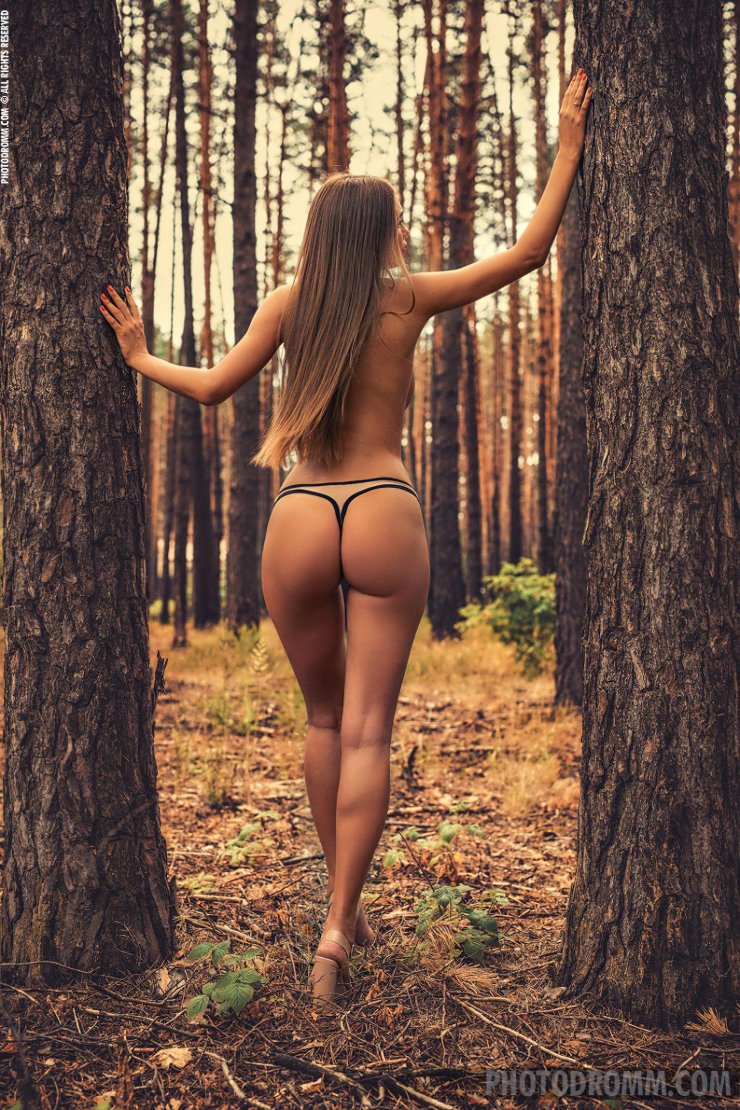 No Meio da Floresta (5)